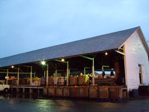The produce auction barn